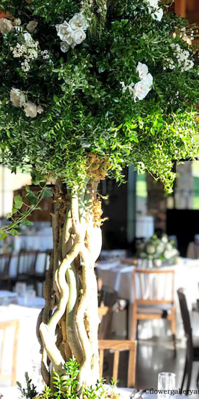 Botanical Green Topiary with White Roses