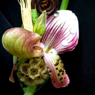 Beautiful Funky Boutonniere